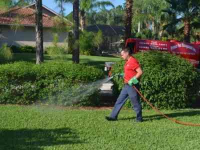naples landscape pest control