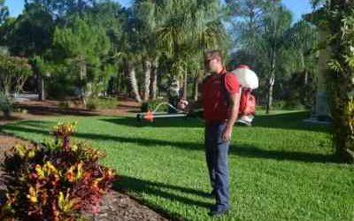Ave Maria Pest Control Services