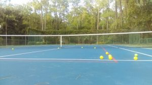 pickleball court in naples
