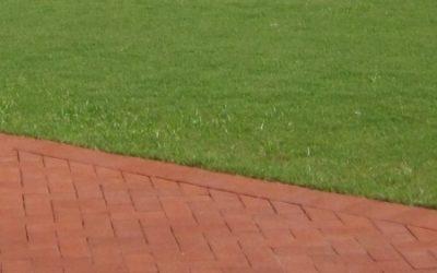 Naples Lawn Care Tip, Fertilization