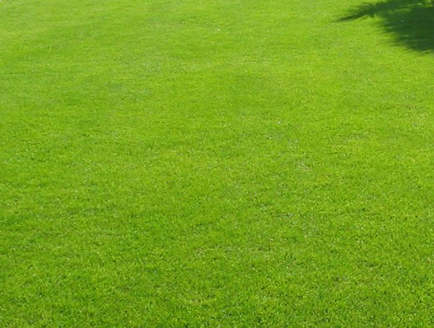 naples fl lawn fertilization services