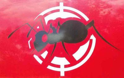 Naples Pest Control Jobs